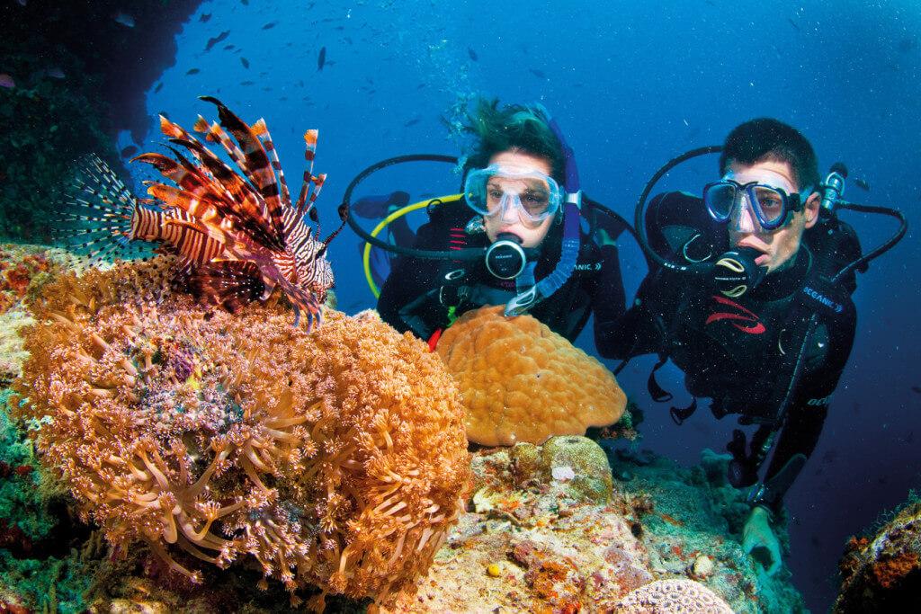 diving cham island