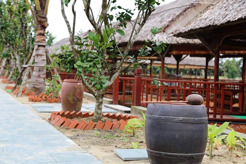 rừng dừa hội an